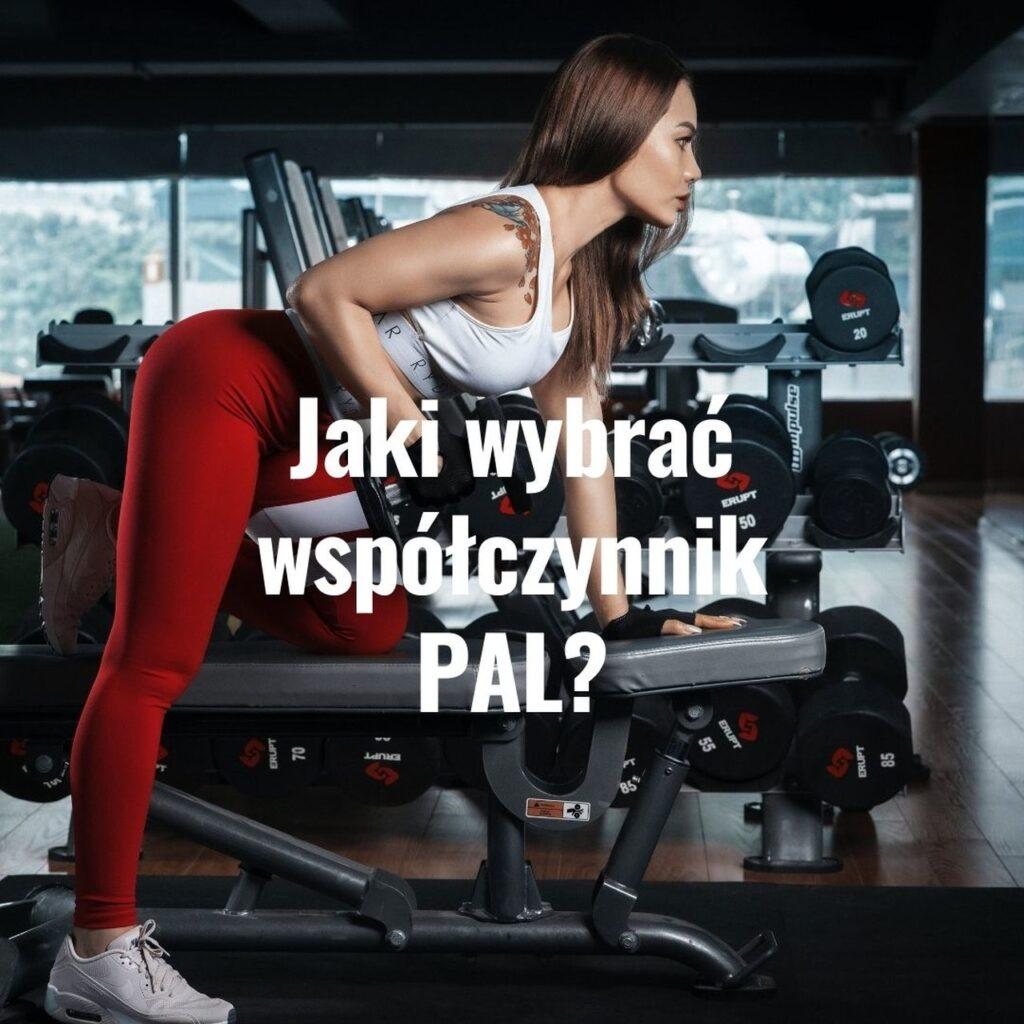współczynnik PAL